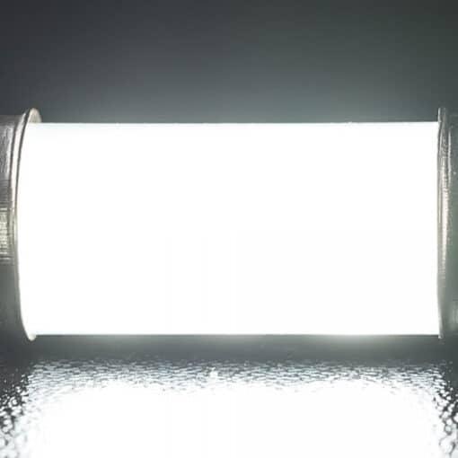STEDI 28mm FESTOON LED Bulb Closeup 3