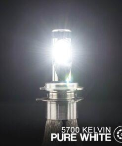 STEDI Copper Head H4 LED Head Light Conversion Kit Closeup 5